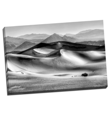 Image of Canvas Print 48 x 32 Gallery Wrap