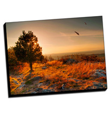 Image of Photos on Canvas 40 x 30 Gallery Wrap Canvas