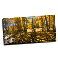 Image of Canvas Print 36 x 18 Gallery Wrap