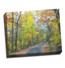 Image of Photos on Canvas 20 x 16 Gallery Wrap Canvas
