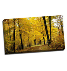 Image of Canvas Print 32 x 18 Gallery Wrap